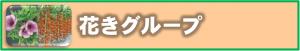 화초 그룹