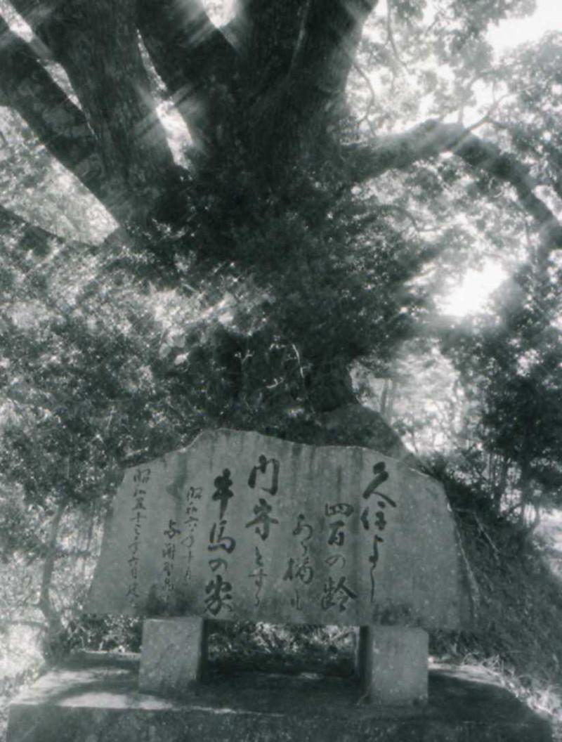 与謝野晶子歌碑 -久住町歌碑の道- - 大分県ホームページ